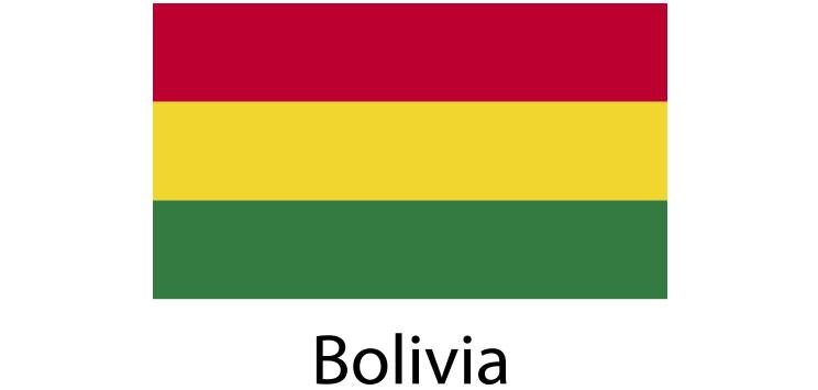Bolivia Flag sticker die-cut decals