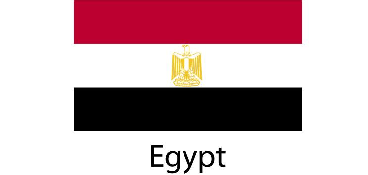 Egypt Flag sticker die-cut decals