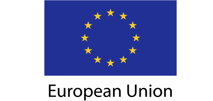 European Union Flag sticker die-cut decals