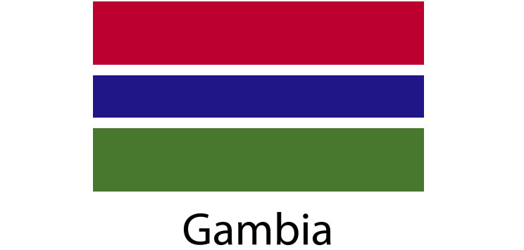 Gambia Flag sticker die-cut decals