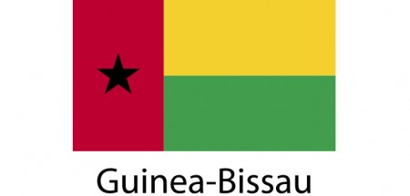 Guinea-Bissau Flag sticker die-cut decals