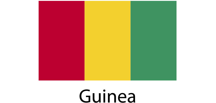 Guinea Flag sticker die-cut decals