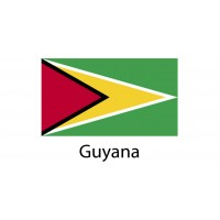 Guyana Flag sticker die-cut decals