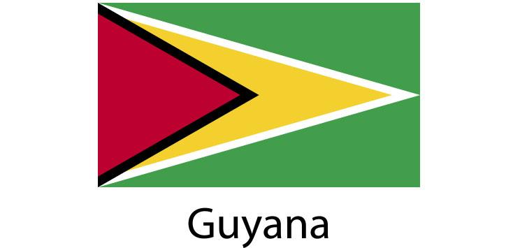 Guyana Flag sticker die-cut decals