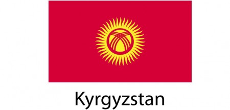 Kyrgyzstan Flag sticker die-cut decals