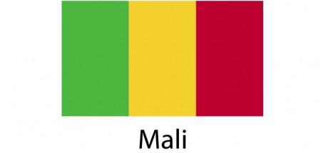 Mali Flag sticker die-cut decals