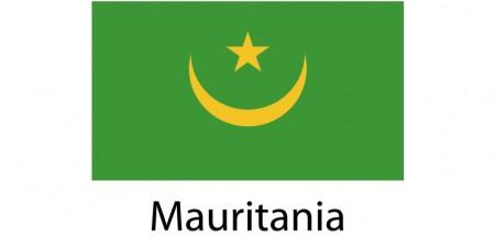 Mauritania Flag sticker die-cut decals