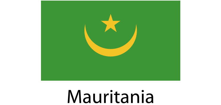 Mauritania Flag sticker die-cut decals