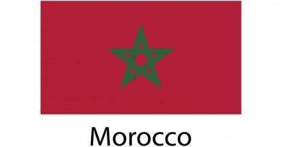 Morocco Flag sticker die-cut decals