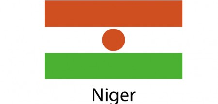 Niger Flag sticker die-cut decals