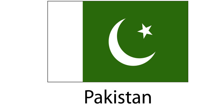 Pakistan Flag sticker die-cut decals