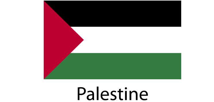Palestine Flag sticker die-cut decals