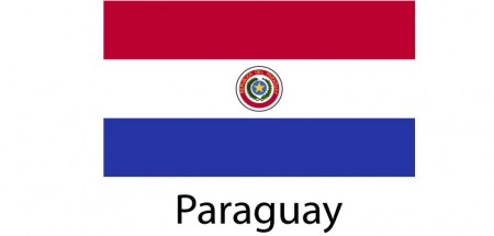 Paraguay Flag sticker die-cut decals