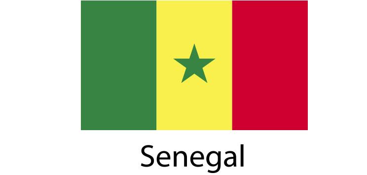 Senegal Flag sticker die-cut decals