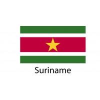 Suriname Flag sticker die-cut decals