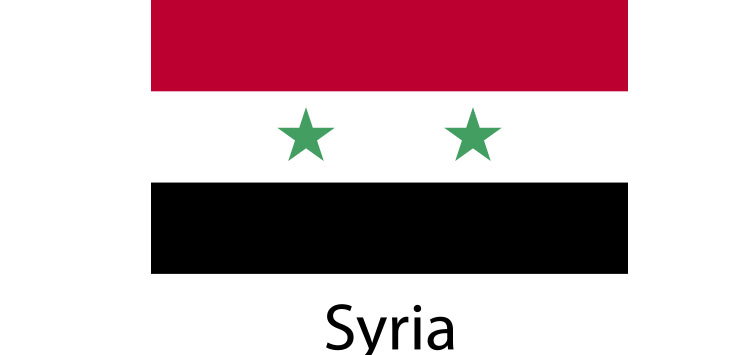 Syria Flag sticker die-cut decals