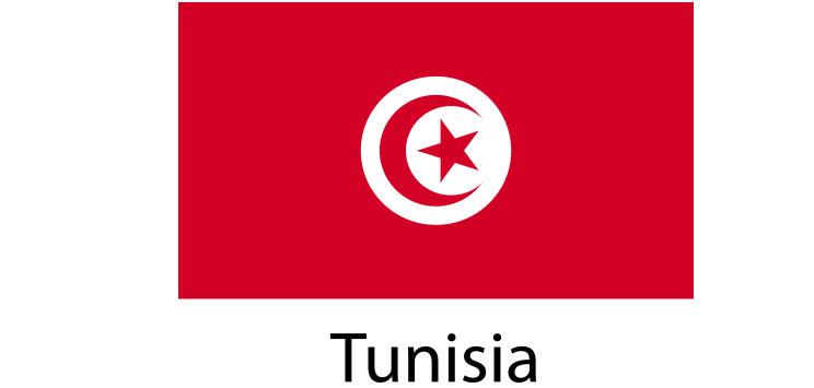 Tunisia Flag sticker die-cut decals