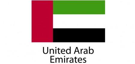 United Arab Emirates Flag sticker die-cut decals