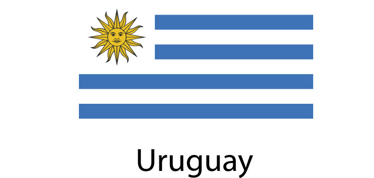 Uruguay Flag sticker die-cut decals
