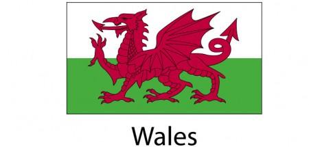 Wales Flag sticker die-cut decals
