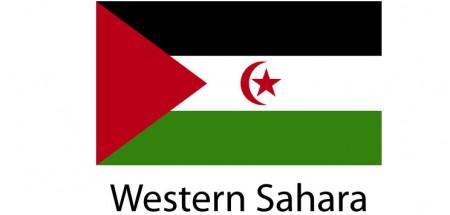 Western Sahara Flag sticker die-cut decals