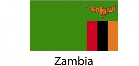 Zambia Flag sticker die-cut decals