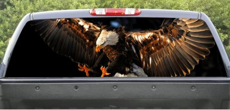 Rear Windows Graphics Bald Eagle