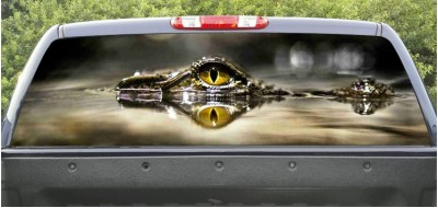 Rear Windows Graphics Cocodrile eyes