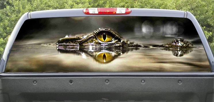 Rear Windows Graphics Cocodrile eyes