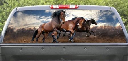 Rear Window Graphic run horses