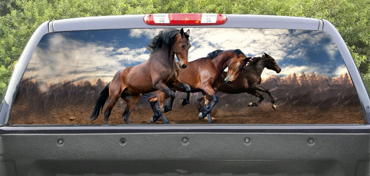 Rear Window Graphic run horses