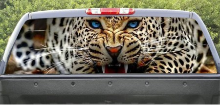 Rear Windows Graphics Wild Leopard