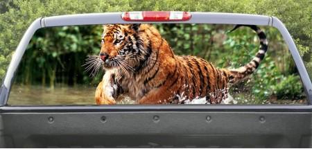 Rear Windows Graphics Tiger Atack