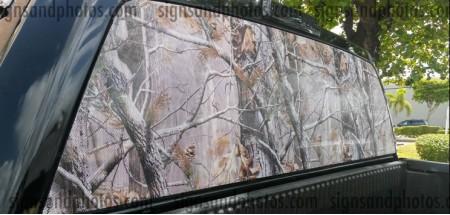 Camouflage  Rear Window