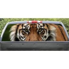 Rear Window Graphic Tiger Closeup
