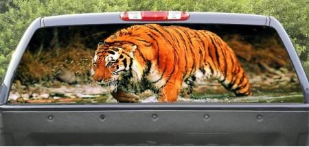 Rear Window Graphic Tiger