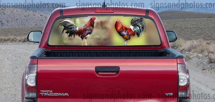 Rear Window Graphic Roosters