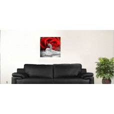 """White Swan and red rose L. 18""""x18"""""""