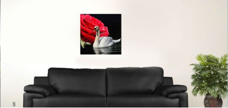 "White Swan and red rose R. 18""x18"""