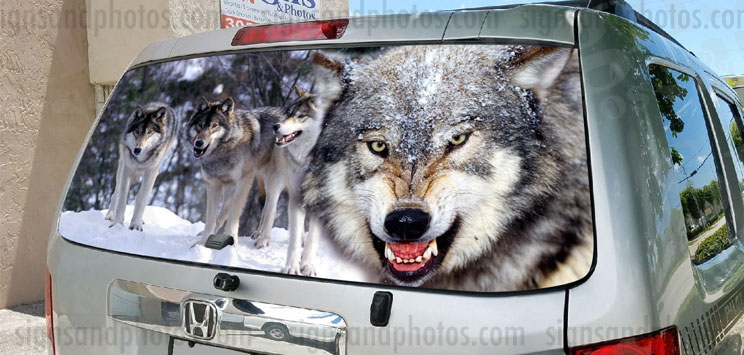 Rear Window Graphic Pack of wolves